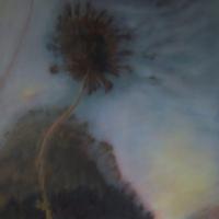 Luce, olio su tela cm 70x70